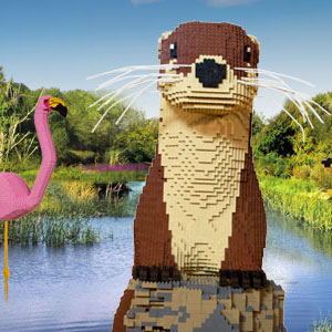 Giant Lego Brick Animal Trail, WWT Slimbridge
