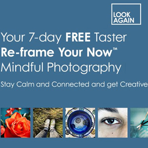 Reframe Your Now with Mindful Photography